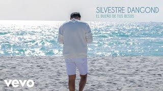 Silvestre Dangond - El Dueño de Tus Besos (Audio)