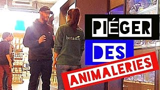 Video PIÉGER DES VENDEURS EN ANIMALERIE (TROLL #3) - L'insolent MP3, 3GP, MP4, WEBM, AVI, FLV Juni 2017