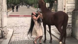 24 Heures De La Vie D'une Femme Et D'un Cheval - Version Courte