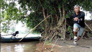 Video Baru Aja Strike Udang Galah,,Tiba-Tiba Joran Saya Ditarik Ikan SIDAT !! MP3, 3GP, MP4, WEBM, AVI, FLV Januari 2019