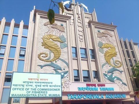 Taraporewala Building
