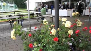 #442 Rosen- und Geburtstagsimpressionen Teil 1 von 3
