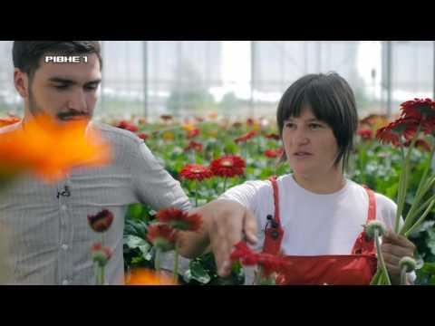 Школа майстрів. Вирощування квітів за європейськими стандартами