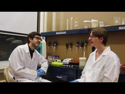 Biotown, Ottawa's community biology lab, is crowdfunding water testing