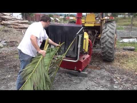 Triturador de galhos Lippel - Bio 1500 - Triturando galhos de coqueiro