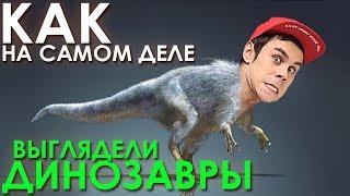 Как на самом деле выглядели динозавры? - ТОПЛЕС