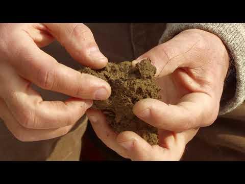 Fertilità del suolo, un tutorial per valutarla
