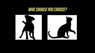 Video Cat vs Dog - Best Support Class MP3, 3GP, MP4, WEBM, AVI, FLV Juli 2018