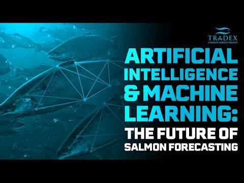 3MMI - AI Machine Learning The Future Of Salmon Forecasting
