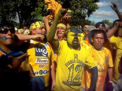 Entrada de la fuerza canaria al estadio - La Fiel Amarilla - Once Municipal