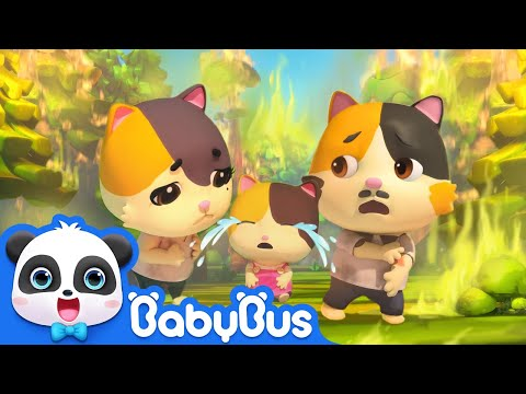 Super Panda Rescues Baby Kitten in Forest Fire | Super Rescue Team | Kids Safety Tips | BabyBus