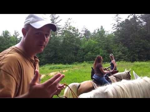 Horseback riding in DuPont State Forest Brevard, North Carolina