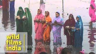 image of Women offer prayer during Chhath Puja - Delhi