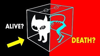 Schrödinger's Cat - The Biggest Mystery of Physics is Finally Solved!