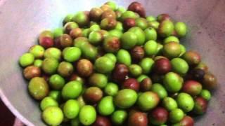 Kalakai urugai or cranberry pickle