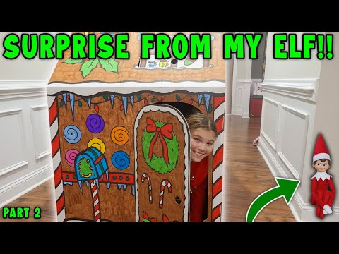 Huge Present From My Elf Part 2! My Elf Is Out Of Quarantine!