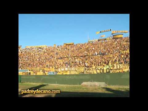 Desde pendejo yo te vengo a ver - Hinchada de Peñarol - Barra Amsterdam - Peñarol