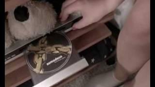 Video Hodina Štíra