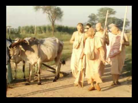 Video We are Thinking We Are Sitting on This Floor but Actually We're Sitting in Krishna - Prabhupada 0680 download in MP3, 3GP, MP4, WEBM, AVI, FLV January 2017