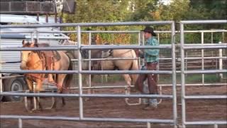 Coweta (OK) United States  City new picture : Wild Horse Ministries - Coweta, OK - 7/29/16