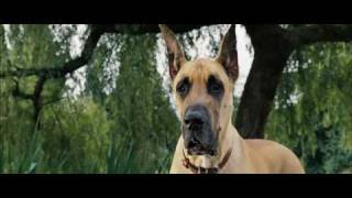 Nonton Marmaduke 2010   Trailer Film Subtitle Indonesia Streaming Movie Download