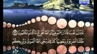 المصحف المرتل 01 للشيخ محمد صديق المنشاوي رحمه الله HD