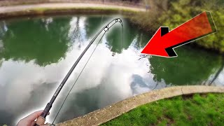 CARP FISHING Canal And Lake DISCOVERY - Carl And Alex Fishing - 2015