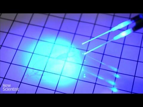 sterowna-laserem-cybernetyczna-plaszczka-ze-szczurzych-komorek-sercowych