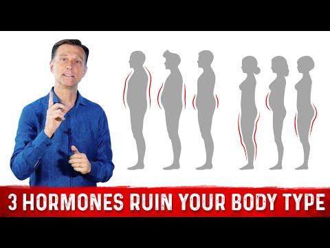 The 3 Hormones That Ruin Your Body Type