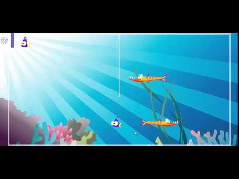 Video of Fish Tank Divider