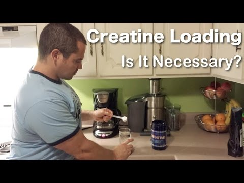 Creatine Loading Phase VS. Creatine Maintenance Phase