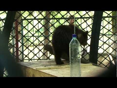 VIER PFOTEN - Nastia im Zoo Lutsk