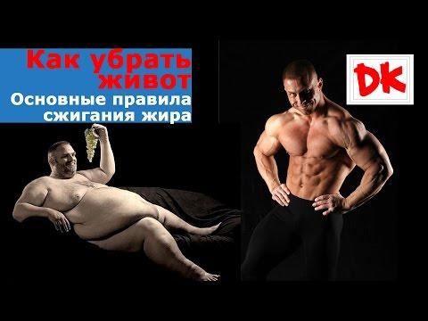 Алексей макаров личная жизнь почему похудел фото до и после