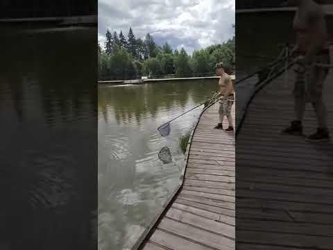 Видеоотчет о рыбалке за 25 июля 2021 г.
