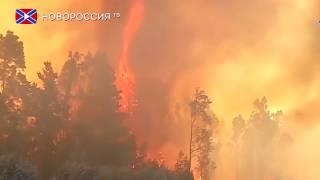 """Жители Чили в """"заложниках"""" лесного пожара"""