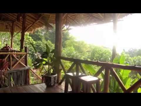 Koh Chang: Dschungel, Strand und Motorbike