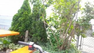 4. Review on my z50 Suzuki quad sport