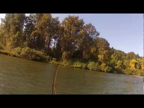 Willamette Fly Fishing with Spey Rod