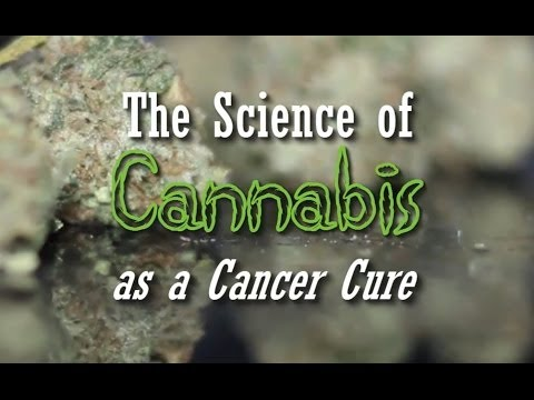 The Science of Cannabis as a Cancer Cure (New Documentary)