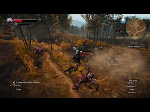 The Witcher 3: Easy Method for Infinite XP Farming in early of the game (patch 1.51 still works)