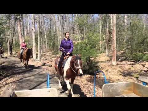 Julia Abelev: slow-mo horseback riding in Pocono, PA