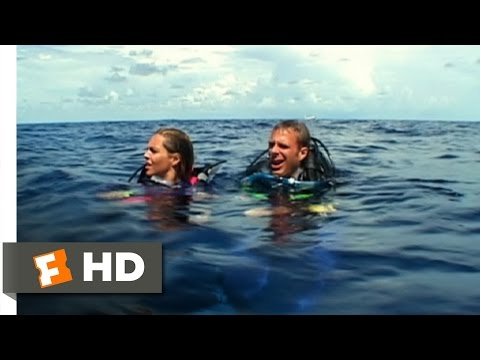 Open Water (3/11) Movie CLIP - Left Behind (2003) HD