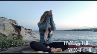 Welcome to Living the Yogi Life with Kino. Filmed on Bondi Beach Australia, take the lessons of yoga into your life. Watch more on http://www.omstars.comIf you're looking for yoga videos that will show you the perfect way for you to start your yoga journey then Kino MacGregor's yoga channel is perfect for you! Whether you are new to yoga or an advanced yoga student you will find a full yoga library with all the yoga postures that you need to develop a complete yoga practice. Yoga is more than just a physical practice yoga is a lifestyle that includes living a peaceful life. Living the yoga lifestyle is about yoga practice, inner peace, yoga diet and being a good person on and off your yoga mat. Kino is a yoga teacher, author of three books, international teacher, writer, blogger, online yoga class teacher, IG yoga challenge host and much more. She co-founded Miami Life Center and Miami Yoga Magazine as well as produced six Ashtanga Yoga DVDs. Practice yoga, change your world one breath at a time. Kino believes that yoga is a vehicle for each student to experience the limitless potential of the human spirit. You don't have to be strong or flexible to begin the yoga practice, all you need is an open heart and the inspiration to practice yoga. Unroll your mat and do the practice!Facebook - http://www.facebook.com/KinoYogaInstagram - http://www.instagram.com/KinoYogaBlog - http://www.kinoyoga.com