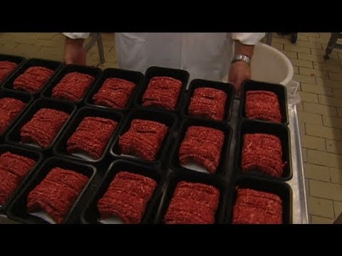 5% of EU beef products contain horsemeat, says EU