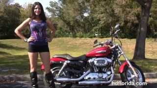 10. New 2014 Harley Davidson Sportster 1200 Custom Motorcycles for sale