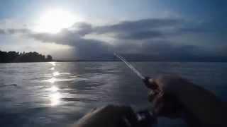 Kinneret Israel  city photos : First 15 minutes of fishing at Kineret, Israel 2014