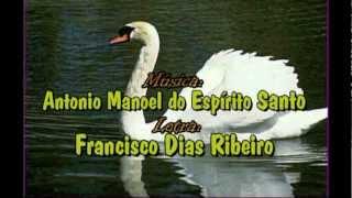 Cisne Branco, como é conhecida a Canção do Marinheiro, é a música que encerrou a abertura do Sétimo Festival de Harpas do...