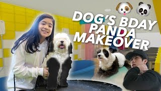 Video DOG'S BIRTHDAY PANDA MAKEOVER | Ranz and Niana MP3, 3GP, MP4, WEBM, AVI, FLV November 2018