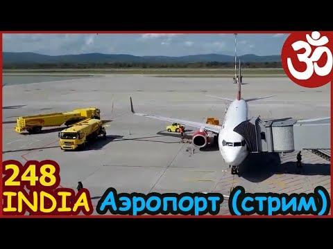 Индия началась. Аэропорт Владивосток. Прямая трансляция. - DomaVideo.Ru