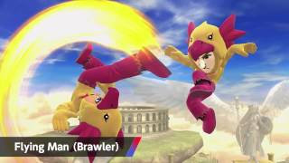 Mii Fighter Costumes: July 31st Update Full Video